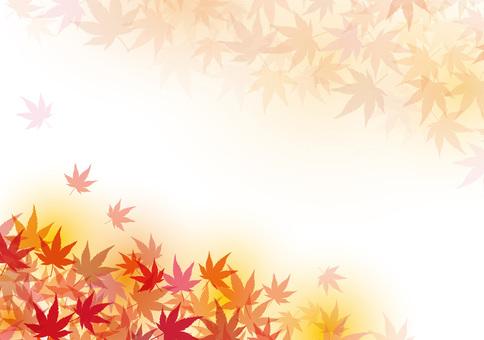 단풍 단풍 가을 배경 소재 질감 벽지 장식