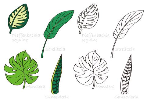 植物叶子离开