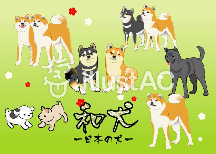 日本犬和犬いろいろイラスト No 965259無料イラストなら