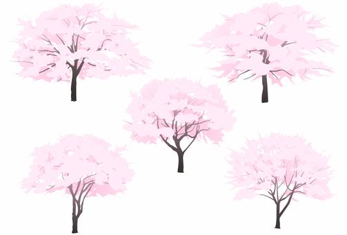 Sakuragi