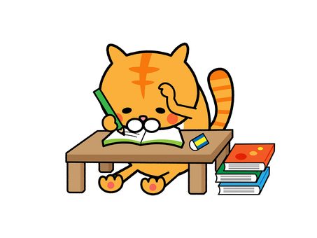Cats troubled because they do not understand their studies