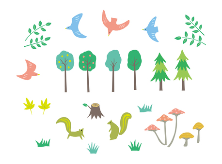 숲의 생활