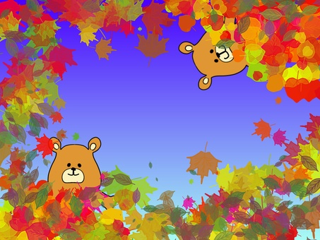 Autumn leaves and sky 13