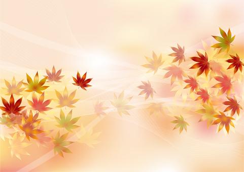 Autumn leaves 315