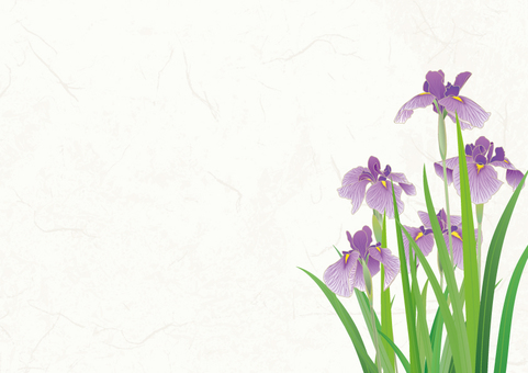 Japanese paper background _ iris