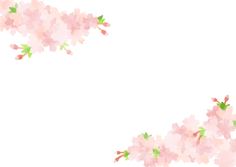 Hand-painted cherry background 3