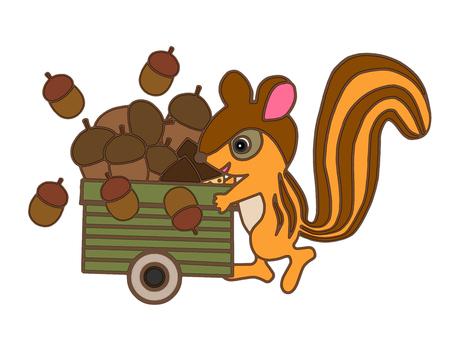 먹이를 모으는 다람쥐