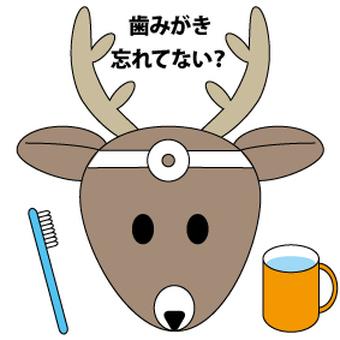 A dental deer? Deer dentistry?