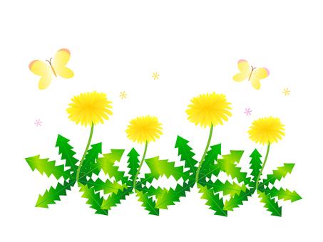 Dandelion illustration