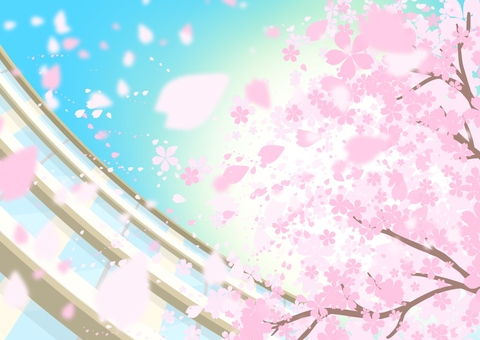 School and cherry blossoms