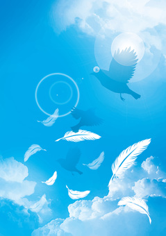 Feathers and birds flying in the blue sky