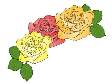 Rose frame ②