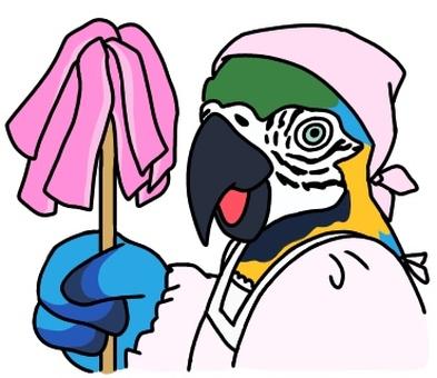 Cleaning parakeet