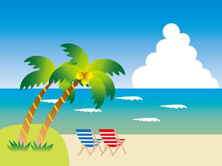 A beach with palm tree