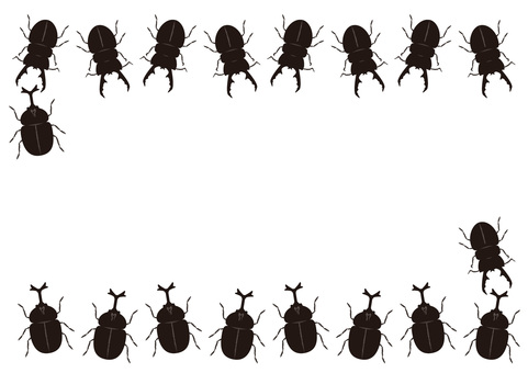 Beetle vs. stag beetle
