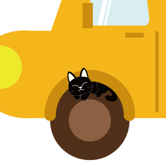 Cats in the tire portion of the car