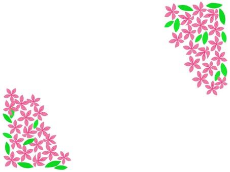 Flower frame satsuki