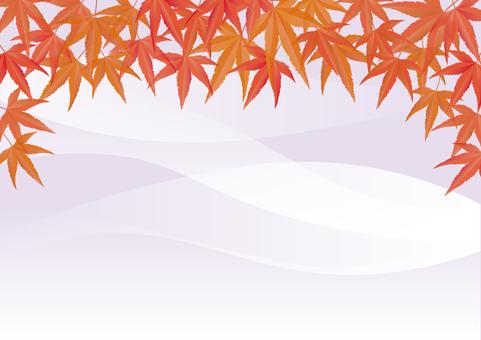 紅葉背景-5