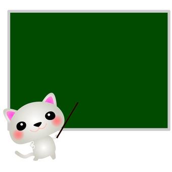 White cat teacher blackboard