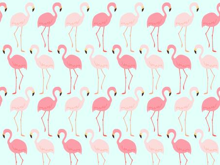 Flamingo pattern background