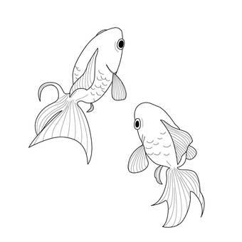 금붕어 (흑백