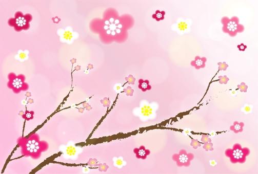 Winter scenery plum blooming sky