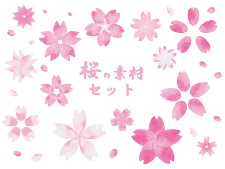 Watercolor cherry blossom petals
