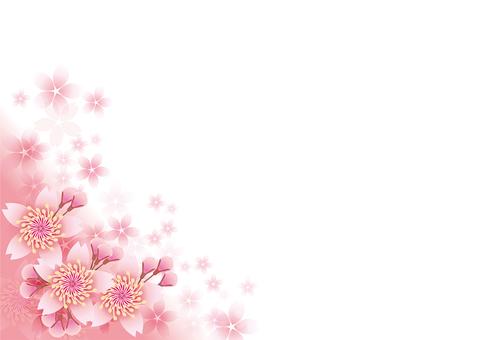 Blooming flowers 44