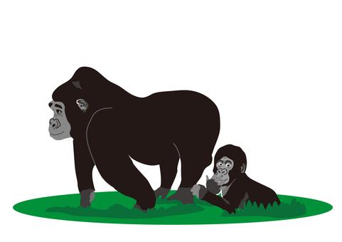 gorilla_ gorilla's mother and child 3
