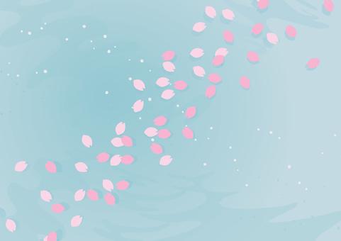 櫻花瓣漂浮在水面1