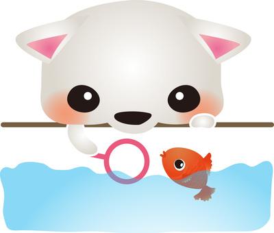 White cat goldfish scoop