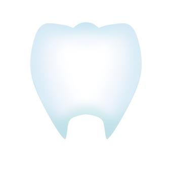 치아 (윤곽선 없음)