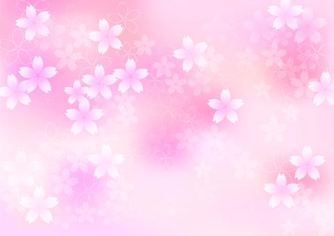 桜 flowers brilliant 331