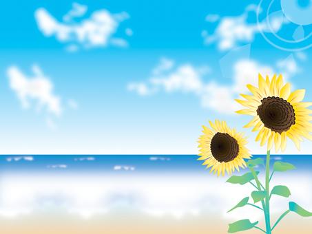 Sea _ Sunflower