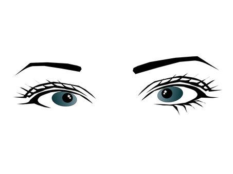 Eye collection 45