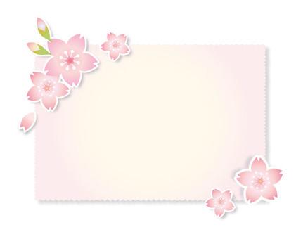 Cherry blossom petal card