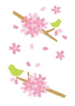 벚꽃과 작은 새