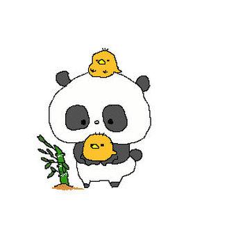 Panda and chick