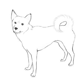 Illustration of </s> (white)