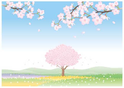 벚꽃 나무와 꽃밭의 풍경