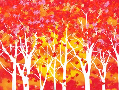 Autumn leaves Sunset 4