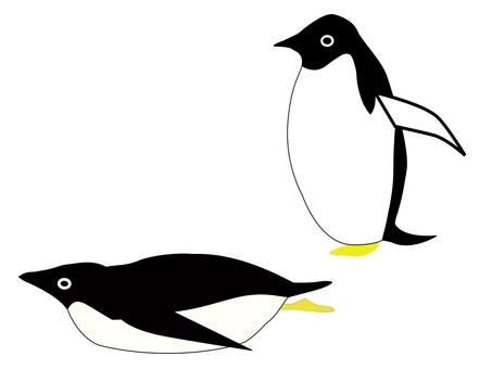 ペンギン2羽