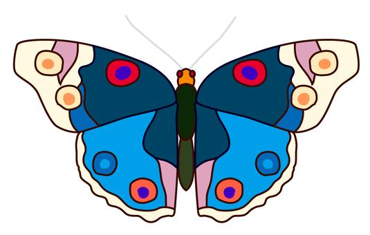 나비 03