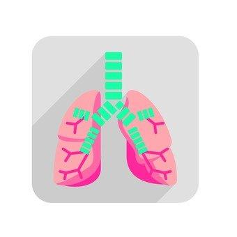 Organs 66