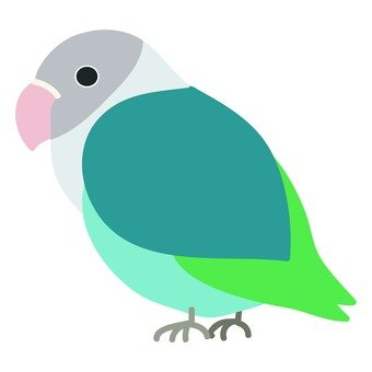 藍色按鈕鸚鵡