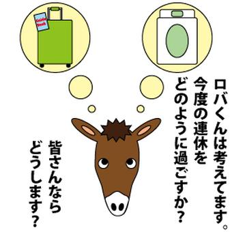 Donkey's holiday