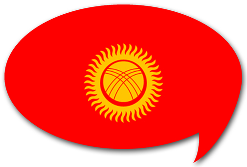 Kyrgyz national flag