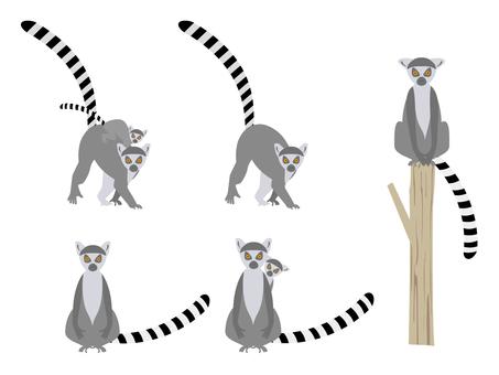 Wow lemurs set