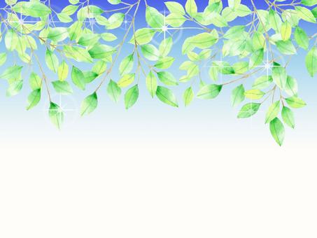 나뭇잎과 반짝 반짝 ★ 0200-E