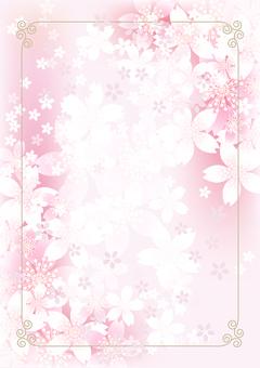Sakura & Sakura 7